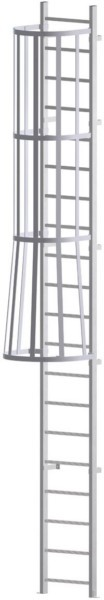 Cage Ladders