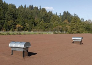 Self-Adhering SBS Modified Bitumen Roofing System
