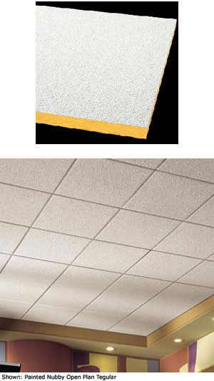 Shasta And Painted Nubby Acoustical Ceiling Tile
