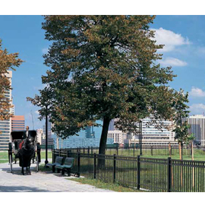 Monumental Iron Works Ornamental Fence and Gates-Master Halco, Inc.