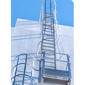 Caged Ladders and Platforms-ALACO Ladder Company