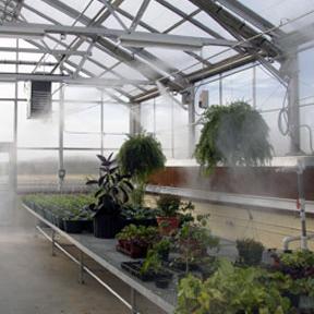 Greenhouse Mist Systems-Winandy Greenhouse Company, Inc.