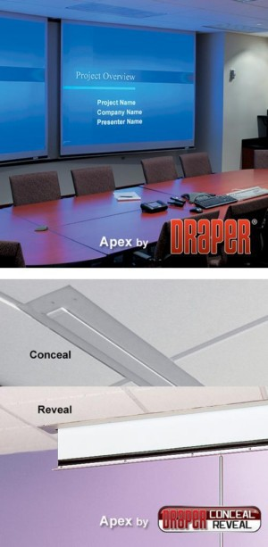 Apex Manual Projection Screen