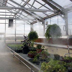 Greenhouse Mist Systems