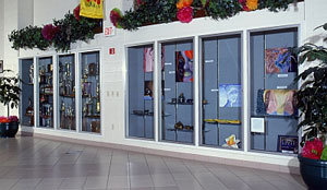 Display and Trophy Cases