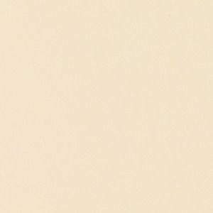Quartz - Premium Cotton Beige - Polished - 2cm