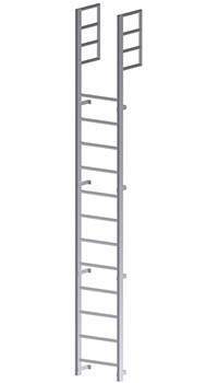 Roof Access Vertical Ladder - U201