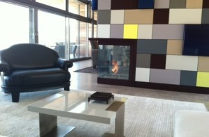 MultiView Gas Fireplaces
