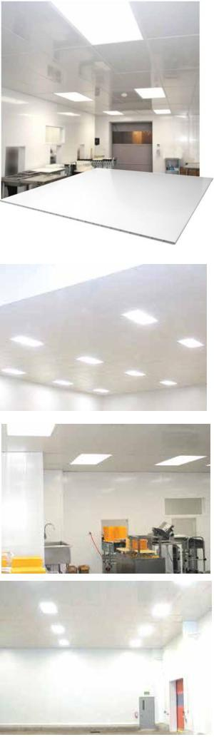 Corrosion-Proof PVC Suspended Ceiling Grid System with Plastic Ceiling Panels