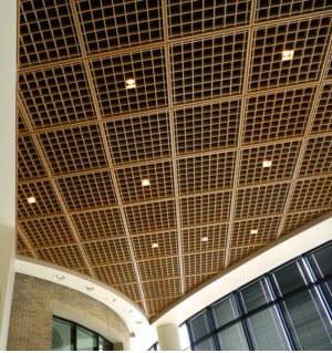 Woodcube Open Cell Acoustical Ceiling Louvers