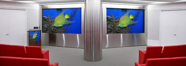 Video Conferencing Screens