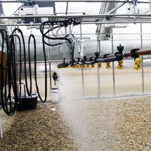 Greenhouse Watering Systems