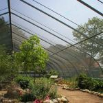 Hendee Enterprises Inc. - Greenhouse
