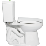 Niagara Conservation - Nano - 0.5/0.8 GPF Dual Flush Elongated Toilet