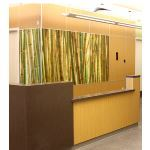 Nudo - Impressions™ - Digital Graphics on Custom Wall Panel