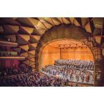 Wenger® Corporation - Diva® Full-Stage Acoustical Shells