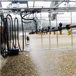 Winandy Greenhouse Company, Inc. - Greenhouse Watering Systems