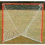 Douglas Industries, Inc. - Lacrosse Goals with Nets, Offical NCAA Size