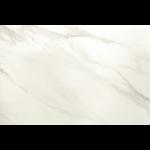 Terrazzo & Marble Supply - Porcelain Tile - Marmi Calacatta - Matte