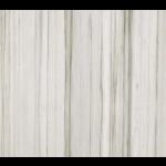 Terrazzo & Marble Supply - Porcelain Tile - Zebrino CG Marmoker - Polished