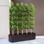 Planters Unlimited - Bamboo Grove Privacy Screen in Modern Fiberglass Planter 72in.L x 12in.W x 72in.H, Outdoor Rated