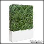 Planters Unlimited - English Ivy Hedges in Planters, Outdoor