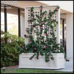 Planters Unlimited - Rolling Trellis Space Divider w/ Outdoor Rated Vines 48inL x 12inW x 72inH