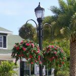 Planters Unlimited - Two-Way Hook Style Hanging Basket Bracket