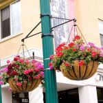 Planters Unlimited - Two-Way Scroll Arm Lamp Post Bracket