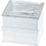 Seves Glass Block Inc. - BG 1919/16 60F Clearview Glass Block