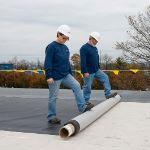 Carlisle SynTec Systems - FleeceBACK EPDM Fleece-Reinforced Roofing Membrane