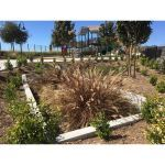 Contech Engineered Solutions - Filterra® Bioretention