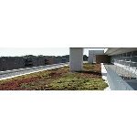 Siplast Roofing & Waterproofing - Vegetated Green Roof Systems (Parapro)