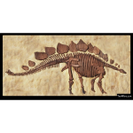 The 4 Kids - Bas Relief - Stegosaurus Panel