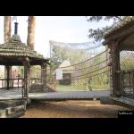 The 4 Kids - Tree House - Net Bridge