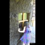 The 4 Kids - Tree House - Tree and Playhouse Windows