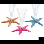 The 4 Kids - Water Features - Starfish Mini Sprayer