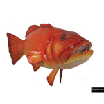 The 4 Kids - Play Sculptures - Coral Trout