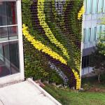 GSky Plant Systems, Inc. - Versa Wall®XT™ Exterior Living Green Wall