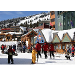 TUFFLEX Polymers - Ski Resort Ped on Plywood - Specialty Coating Solutions