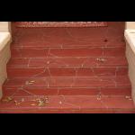 Excellent Coatings International® - Excel-Coat K/D & K/D II Decorative Concrete Protection Systems