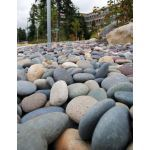 Coverall Stone - Mixed Mexican Beach Pebbles