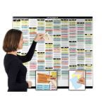 Magnatag Visible Systems - T-Scan® System: Slotted Visible Card Display Panels with Die-cut T-Cards