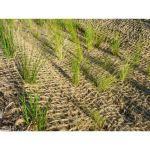 Triton Environmental - Erosion Control Solutions - Coir Mats / Open Weave Textiles