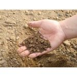 Triton Environmental - Soil Amendments - Soil Conditioners