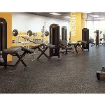 Dinoflex - Interior Recycled Rubber Surfacing - Sport Mat