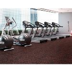 Dinoflex - Interior Recycled Rubber Surfacing - Stride Fitness Tiles