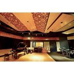 International Acoustics Company - Diffusion Acoustical Systems