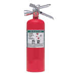 Nystrom - Halon 1 Fire Extinguisher