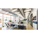 Rockfon - Rockfon® Contour™ Acoustical Ceiling Baffles